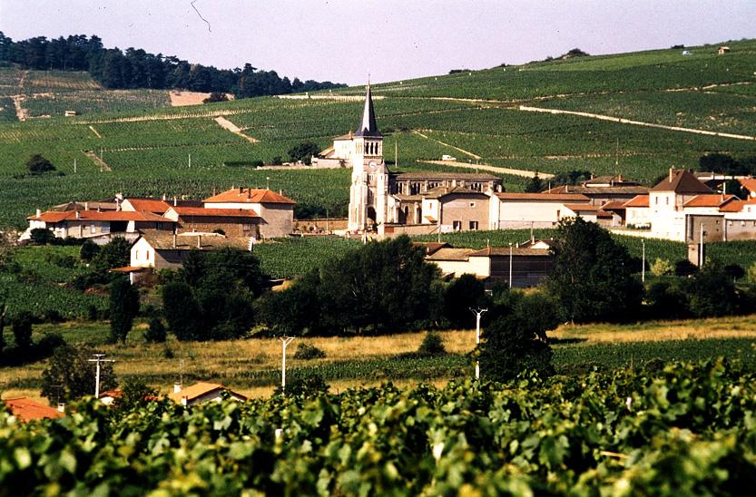 Vins Chénas